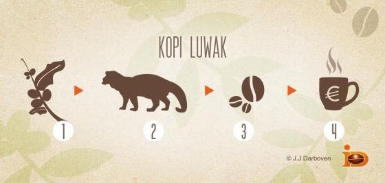 A Kopi Lowak Infograph by J.J.Darboven.